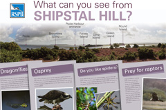 RSPB interpretation panels